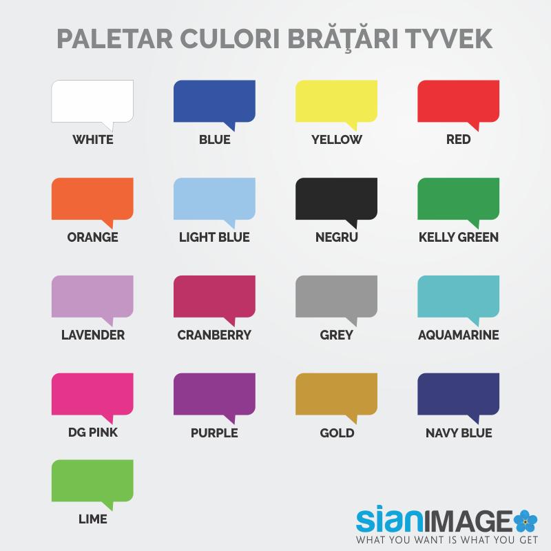 Paletar culori bratari Tyvek